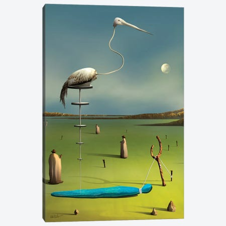 A Garça (The Crane) Canvas Print #MCA4} by Marcel Caram Canvas Art Print