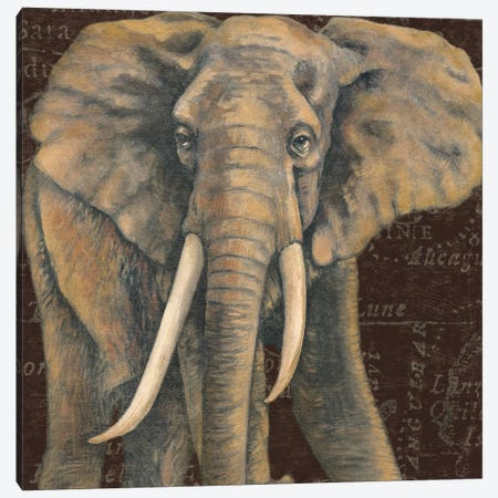 Grand Elephant Traveller Canvas Print #MCB3} by Naomi McBride Canvas Print