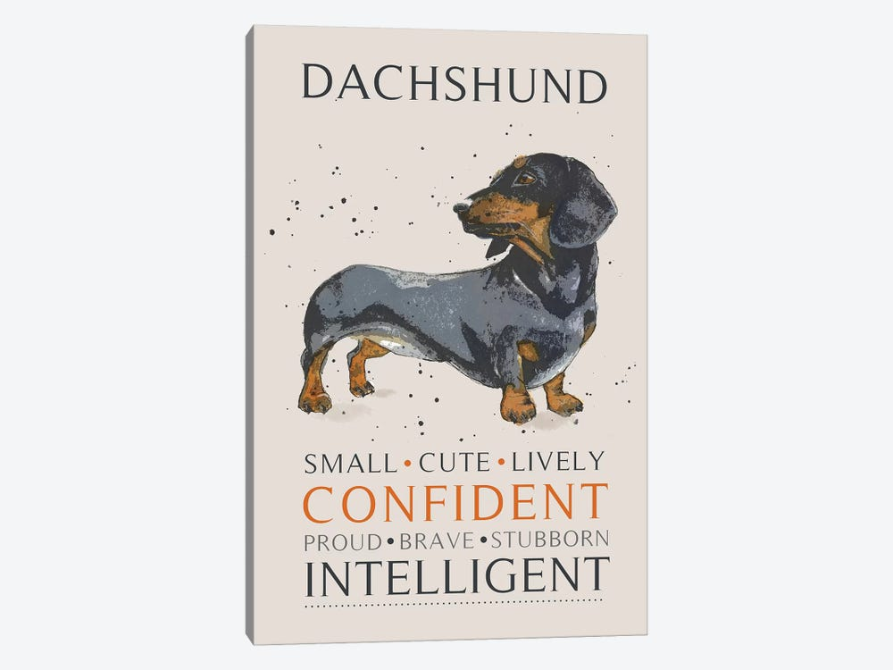 Dachshund by Michelle Campbell 1-piece Canvas Wall Art