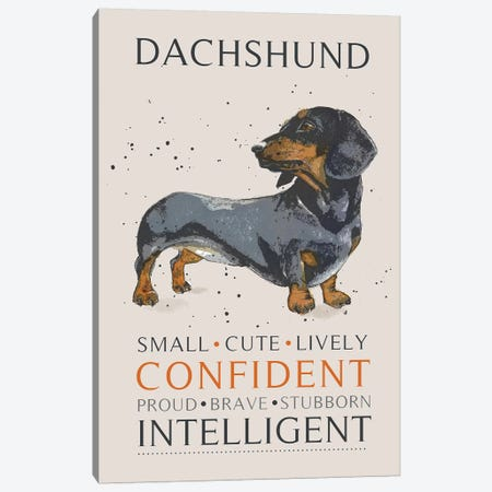 Dachshund Canvas Print #MCE12} by Michelle Campbell Canvas Wall Art
