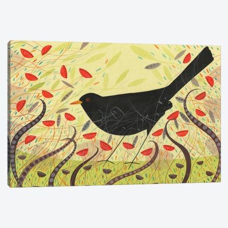 Blackbird Canvas Print #MCE16} by Michelle Campbell Art Print
