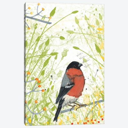 Bullfinch Canvas Print #MCE20} by Michelle Campbell Art Print