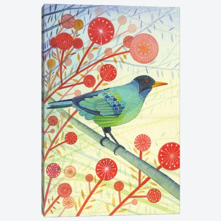 Green Honeycreeper Canvas Print #MCE24} by Michelle Campbell Canvas Wall Art