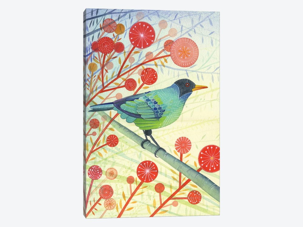 Green Honeycreeper by Michelle Campbell 1-piece Canvas Print