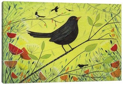 Spring Blackbird Canvas Art Print