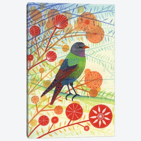 Starling I Canvas Print #MCE36} by Michelle Campbell Canvas Art Print