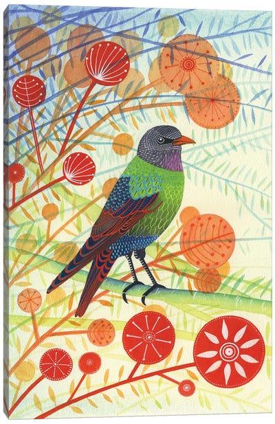Starling I Canvas Art Print