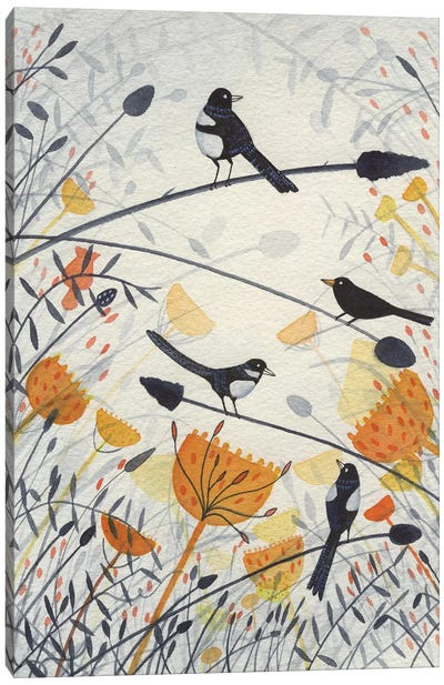 Three Magpies & A Blackbird Canvas Art Print