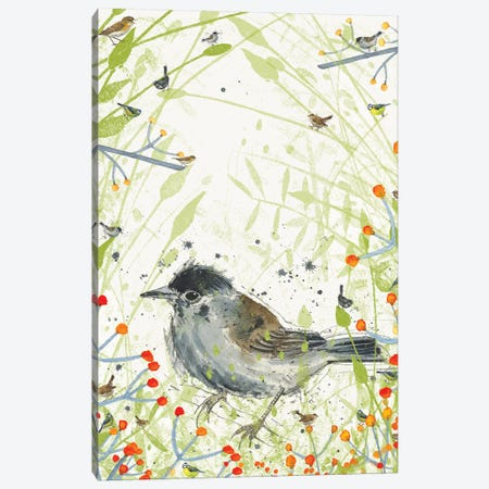 Warbler Canvas Print #MCE44} by Michelle Campbell Canvas Wall Art