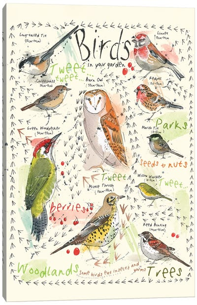 Birds In Your Garden III Canvas Art Print