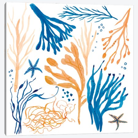 Seaweed Coastal Canvas Print #MCE57} by Michelle Campbell Canvas Art Print