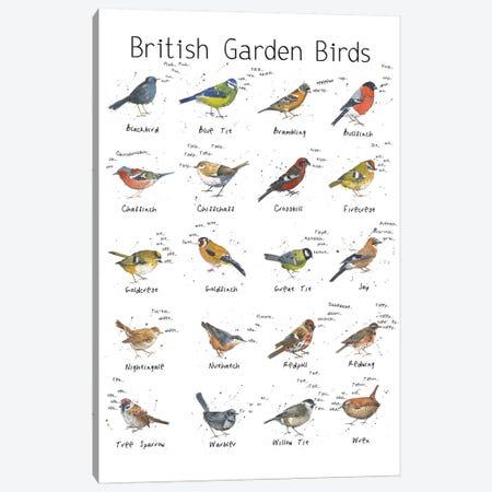 British Garden Birds Canvas Print #MCE6} by Michelle Campbell Canvas Print