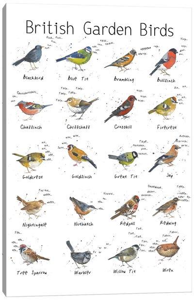 British Garden Birds Canvas Art Print