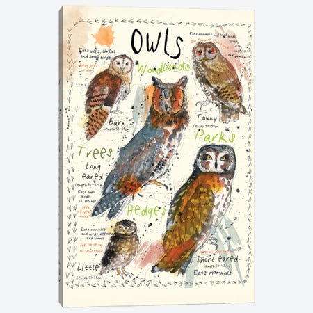 Owls Canvas Print #MCE9} by Michelle Campbell Canvas Wall Art