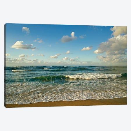 Israel, Haifa. Beaches And Mediterranean Sea Canvas Print #MCH11} by Michele Molinari Canvas Art Print