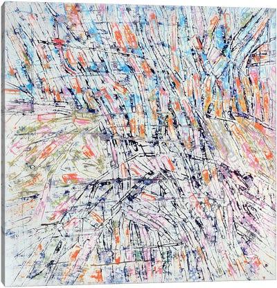 Kaiso Canvas Art Print