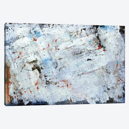 Ice Storm Canvas Print #MCI3} by Macchiaroli Canvas Art