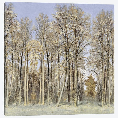 Entrance To The Woods Canvas Print #MCK17} by Christy McKee Art Print