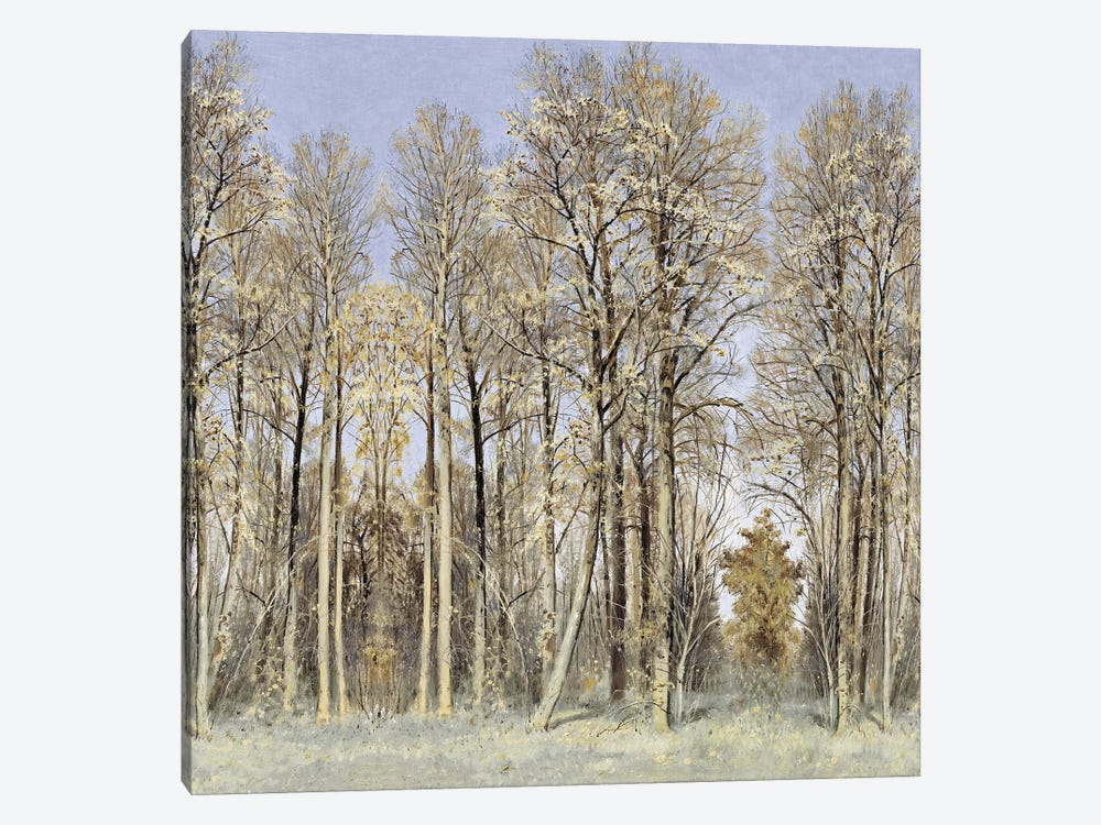 Entrance To The Woods by Christy McKee 1-piece Canvas Wall Art