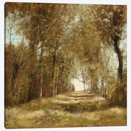 Shaded Path I Canvas Print #MCK18} by Christy McKee Canvas Artwork