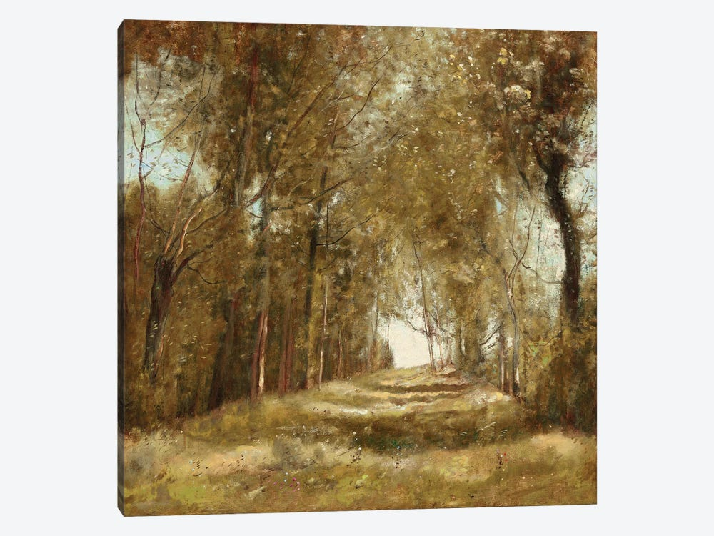 Shaded Path I by Christy McKee 1-piece Canvas Art Print