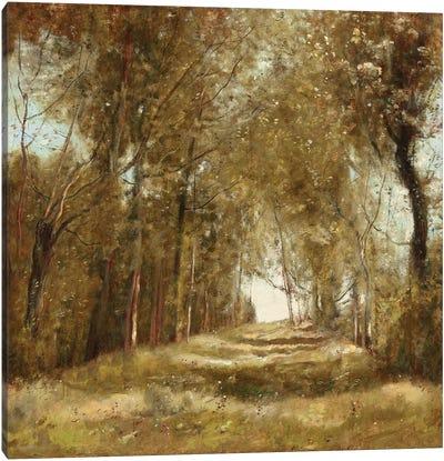 Shaded Path I Canvas Art Print