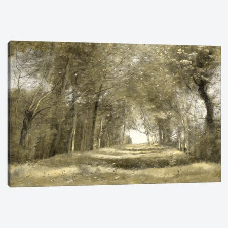 Shaded Path II Canvas Print #MCK19} by Christy McKee Canvas Artwork