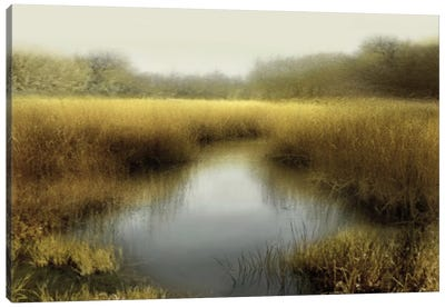 Tranquil Pond Canvas Art Print