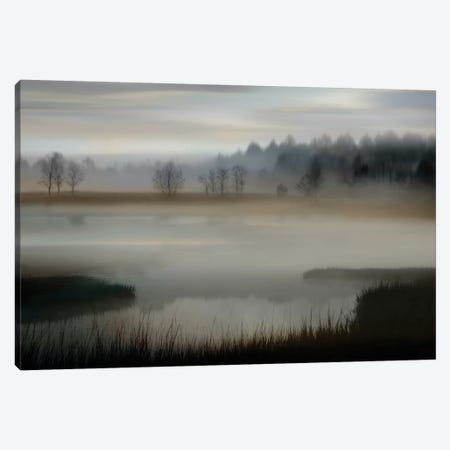 Early Morning Canvas Print #MCL12} by Madeline Clark Art Print