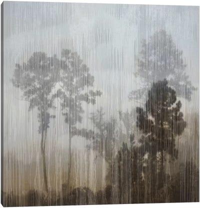 At Dawn I Canvas Art Print