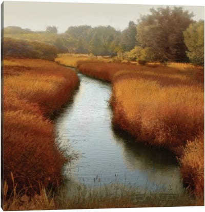 Sunlit Pond I Canvas Print #MCL7