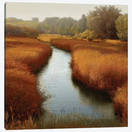Sunlit Pond I Canvas Print #MCL7} by Madeline Clark Canvas Artwork