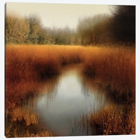 Sunlit Pond II Canvas Print #MCL8} by Madeline Clark Canvas Art Print