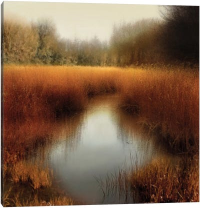 Sunlit Pond II Canvas Art Print