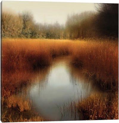 Sunlit Pond II Canvas Print #MCL8