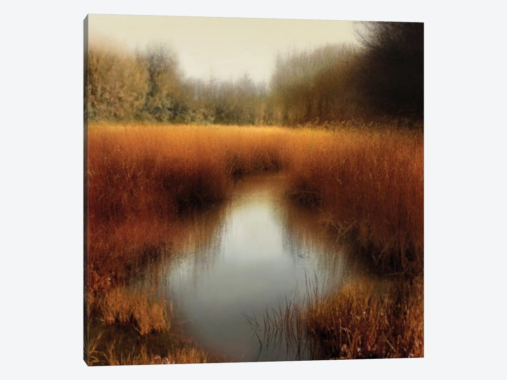 Sunlit Pond II by Madeline Clark 1-piece Canvas Wall Art