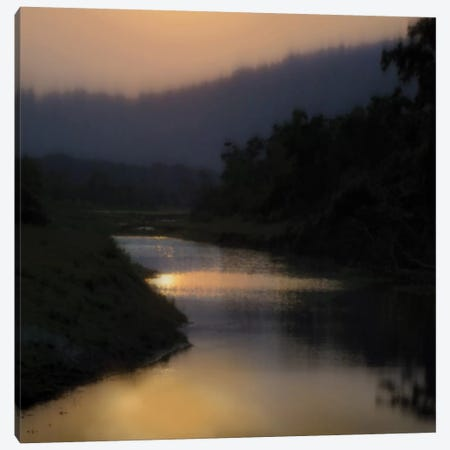 Sunlit River Canvas Print #MCL9} by Madeline Clark Canvas Print