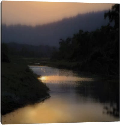 Sunlit River Canvas Art Print