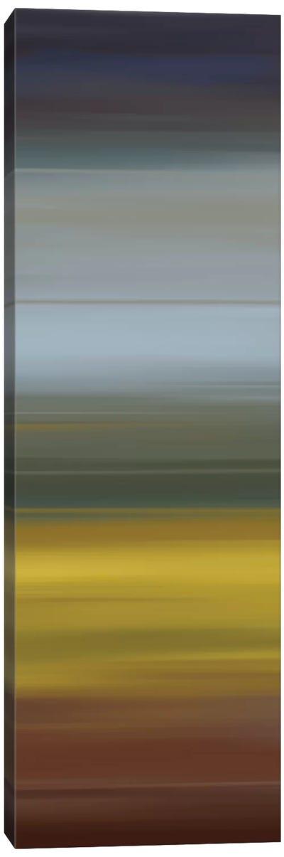 Duende II Canvas Art Print