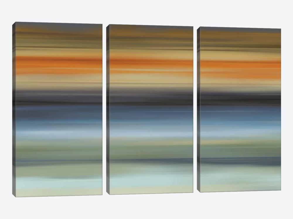 Euphoric I by James McMasters 3-piece Canvas Art Print