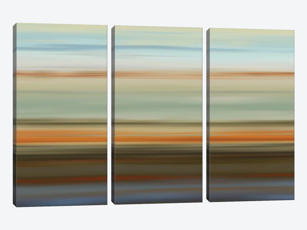 Euphoric II by James McMasters 3-piece Canvas Art