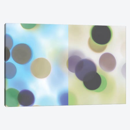Flashbulb Surprise Canvas Print #MCM19} by James McMasters Canvas Art