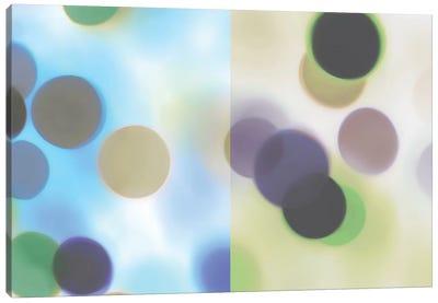 Flashbulb Surprise Canvas Art Print