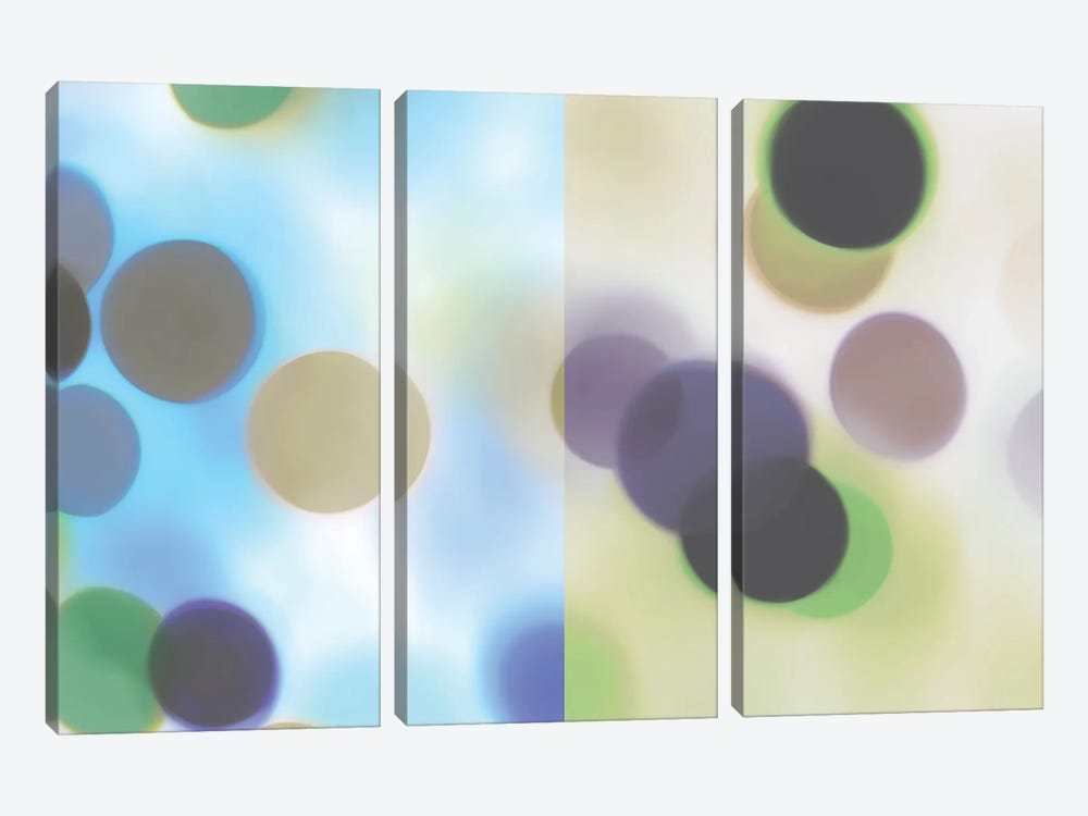 Flashbulb Surprise by James McMasters 3-piece Canvas Art