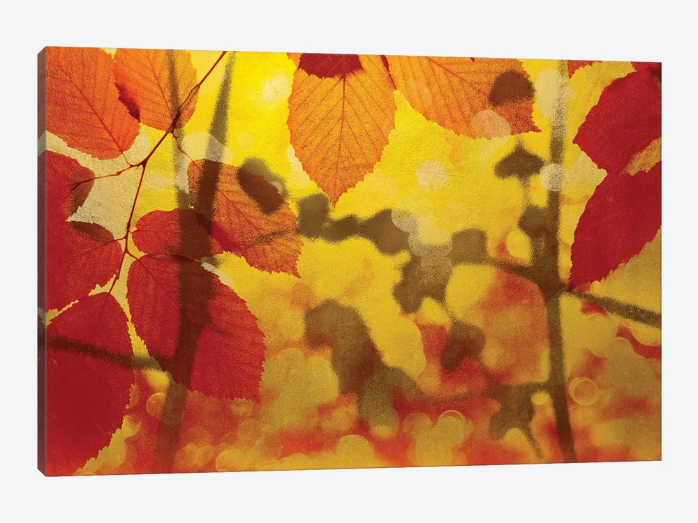 Golden Foliage by James McMasters 1-piece Canvas Print