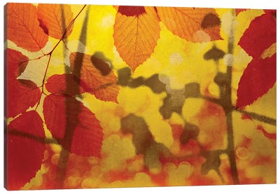 Golden Foliage Canvas Art Print