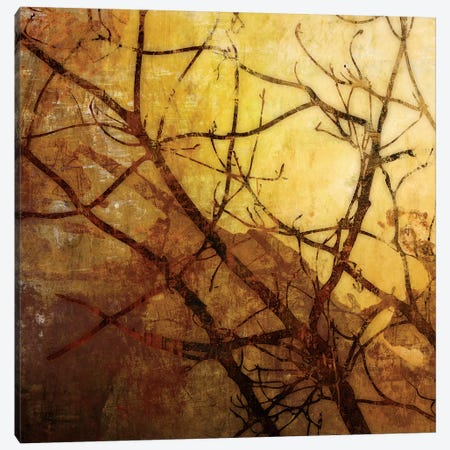 Ombre Branches I Canvas Print #MCM28} by James McMasters Canvas Print