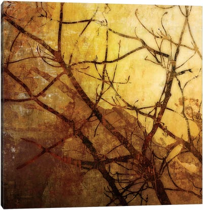 Ombre Branches I Canvas Art Print