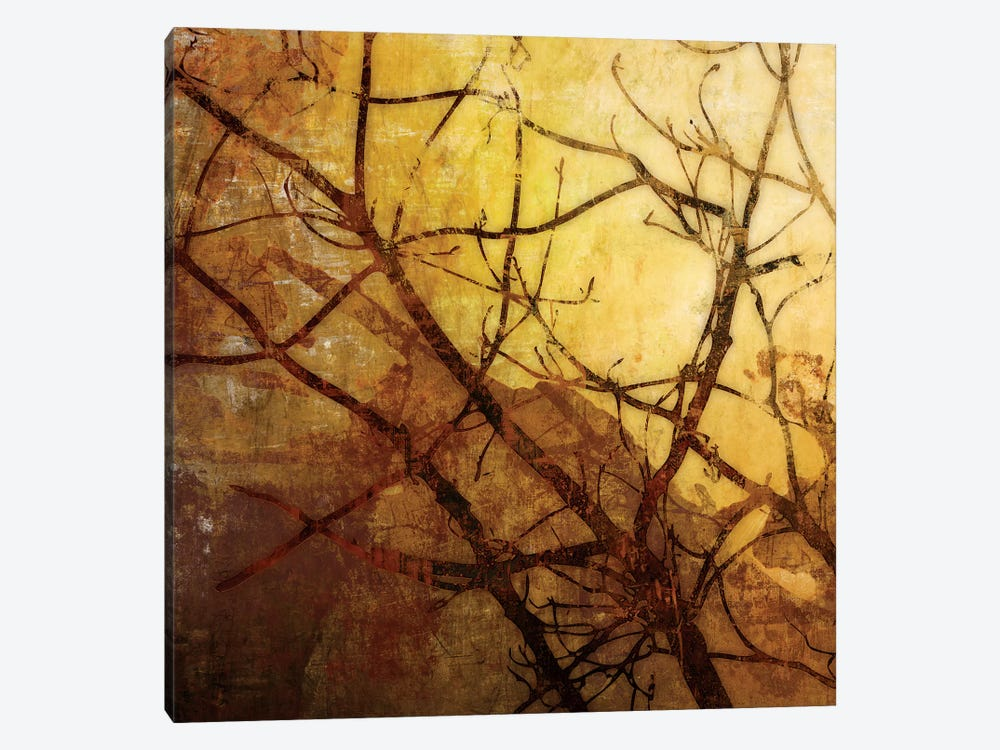 Ombre Branches I by James McMasters 1-piece Canvas Artwork