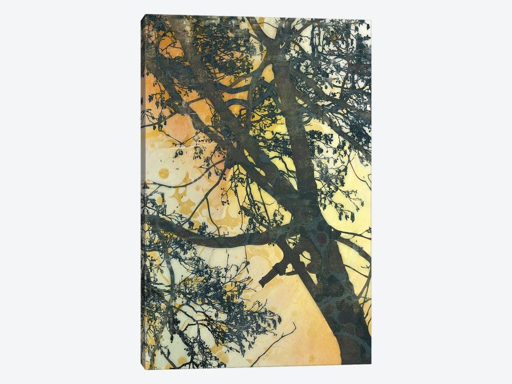 Bubbly Branches by James McMasters 1-piece Canvas Wall Art